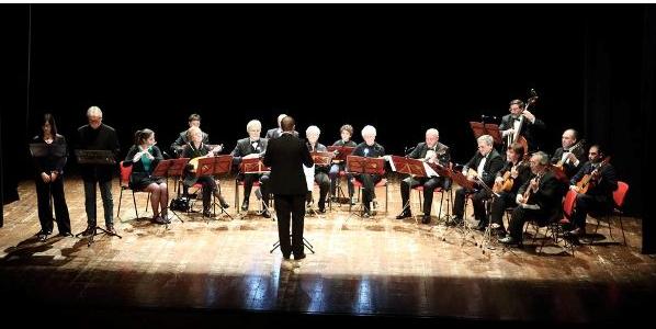 Orchestra a plettro