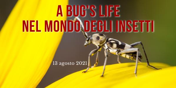 bugs_life_2021